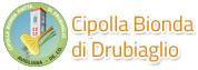 Cipolla Bionda piatta di Drubiaglio